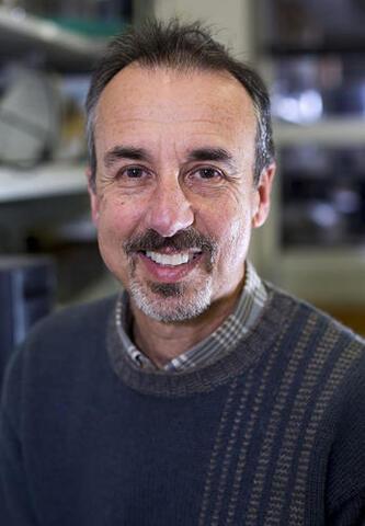 Eduardo Groisman